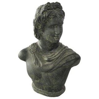 David bust / head, various sizes H 40 - 60 cm, black antique